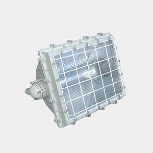 BFD-1000系列防爆泛光灯(IIC)