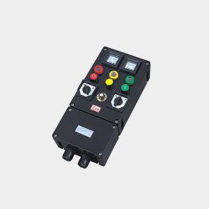 BXK8030 系列防爆防腐控制箱(IIC)