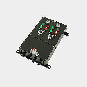 FXM(D)防水防尘防腐配电箱
