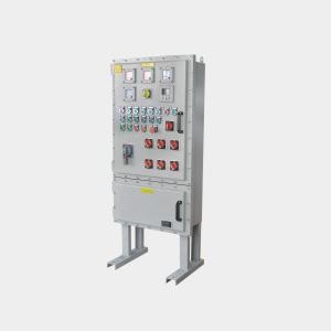 BXM(D)系列防爆动力配电箱/钢板焊接(立式IIB)