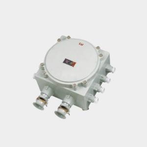 BJX防爆接线箱(IIC)