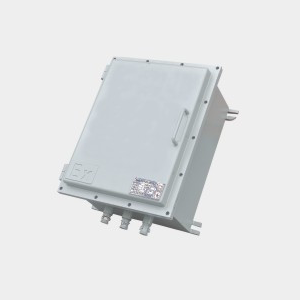 BJX防爆接线箱(钢板焊接)